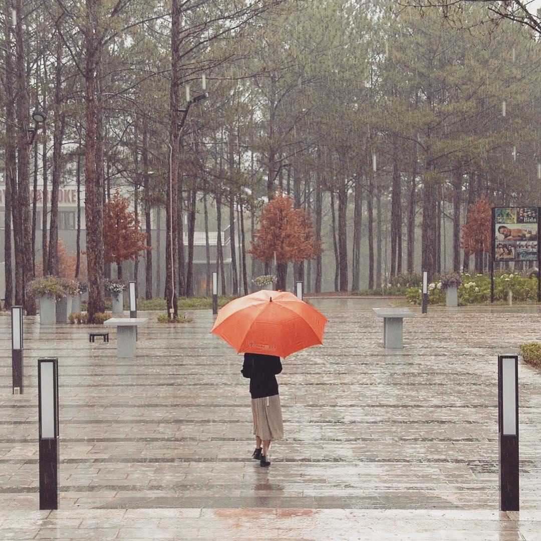 Du lịch Đà Lạt vào mùa mưa