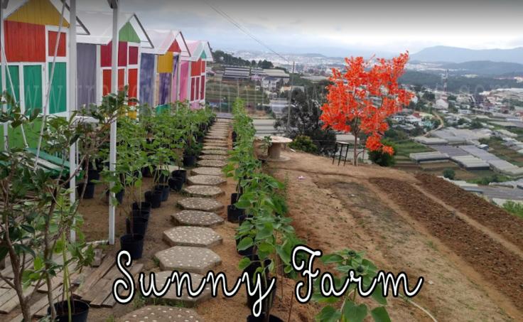 Sunny Farm - Nông trại vui vẻ Đà Lạt