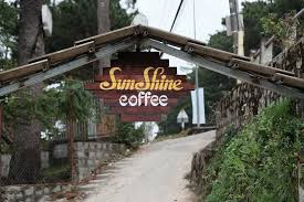 Sunshine Coffee Đà Lạt - Quán cà phê có view đẹp tại Đà Lạt