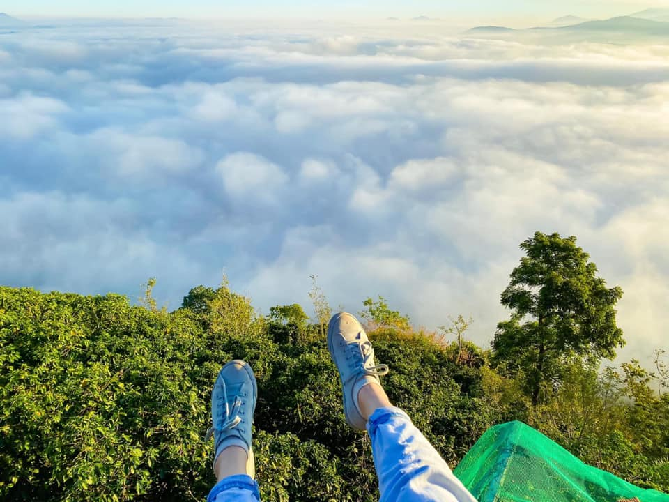 săn mây Đồi Chè Cầu Đất